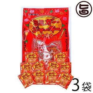 オキハム ミミガージャーキー パーティーパック 小袋10袋入り×3袋 沖縄土産におすすめ 小分けパック 送料無料