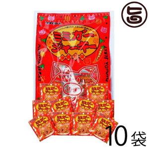 オキハム ミミガージャーキー パーティーパック 小袋10袋入り×1袋 沖縄土産におすすめ 小分けパック 送料無料