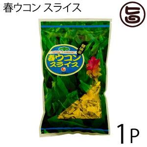 春ウコン スライス 100g×1P 比嘉製茶 沖縄県産 無農薬 フレーク状 クルミン 精油成分 健康維持  送料無料