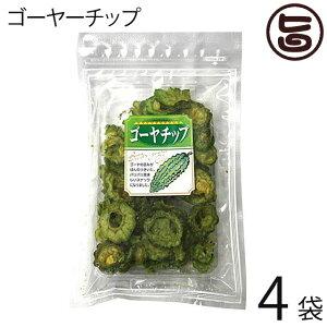 丸茂食品 ゴーヤーチップ 63g×4袋 沖縄 土産 人気 野菜チップス 苦瓜 ドライ野菜 おやつ 送料無料