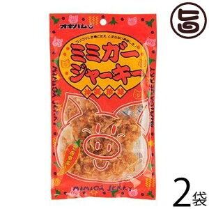 オキハム ミミガージャーキー 23g×2袋 沖縄土産 沖縄 土産 人気 定番 おつまみ 豚耳 珍味 送料無料
