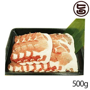 フレッシュミートがなは 山原豚(琉美豚) ≪白豚≫ ロース しゃぶしゃぶ用 500g 沖縄 土産 貴重 肉 条件付き送料無料