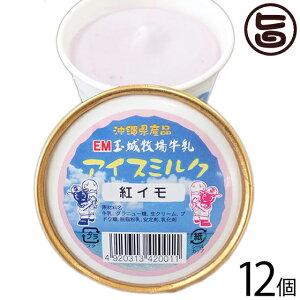 玉城牧場牛乳 EMジェラート アイスミルク 12個入り 紅イモ 卵不使用 沖縄 土産 珍しい ご当地アイス 条件付き送料無料