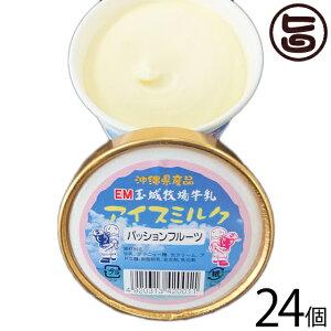 ギフト 玉城牧場牛乳 EMジェラート アイスミルク 24個入り パッションフルーツ 卵不使用 沖縄 土産 珍しい ご当地アイス 条件付き送料無料