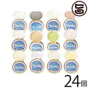 ギフト 玉城牧場牛乳 EMジェラート アイスミルク 24個入り 選べる アソート 卵不使用 沖縄 土産 珍しい ご当地アイス 条件付き送料無料