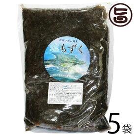 つけん島モズク事業協同組合 津堅島 塩モズク 1kg×5袋 沖縄 人気 土産 定番 海藻 フコイダン豊富 条件付き送料無料