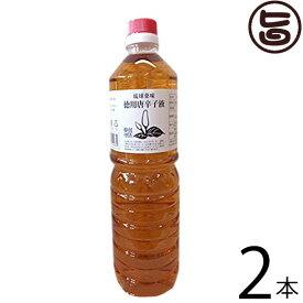 真常 琉球薬味 こーれーぐーす 1L×2本 沖縄県 人気 定番 お土産 調味料 唐辛子 お得な1リットルタイプ 送料無料