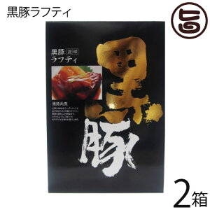 ナンポー 琉球黒豚ラフティー 400g×2箱 沖縄 土産 人気 沖縄の伝統料理ラフティ(豚の角煮)高品質の黒豚バラ肉、  送料無料