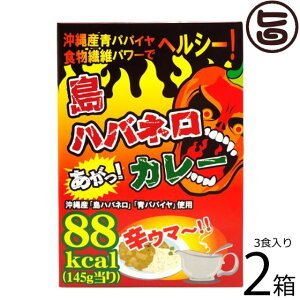 渡具知 島ハバネロカレー 145g×3食入×2箱 沖縄 土産 激辛レトルトカレー 刺激的なスパイスの香り カレーなのに低カロリー! たけしの家庭の医学 ターメリック クルクミン 送料無料