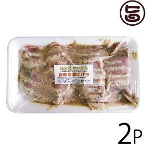 肉の匠テラオカ 大阪プレミアムポーク 香味塩バラ 350g×2P 大阪 人気 肉 専門店 味付き肉 焼くだけカンタン! 条件付き送料無料