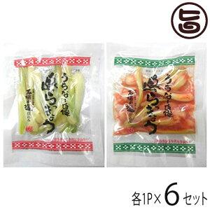 でいごフーズ 沖縄県産 島らっきょう 塩漬け キムチ 各50g 各1P×6セット おすすめ イチオシ おつまみ 送料無料