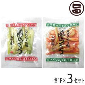 でいごフーズ 沖縄県産 島らっきょう 塩漬け キムチ 各50g 各1P×3セット おすすめ イチオシ おつまみ 送料無料