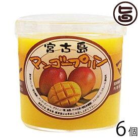 けーきはうす マンゴープリン 82g×6個 沖縄 人気 定番 土産 菓子 トロピカルフルーツ プリン 南国スイーツ 送料無料