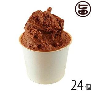 石垣島 ミルミル本舗 チョココーヒー ジェラート 12個×2セット 沖縄 石垣 人気 定番 土産 アイス 送料無料