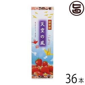 イソップ製菓 いちご大箱 天空の風×36本 熊本県 人気 定番 土産 お菓子 和菓子 仏事用 送料無料