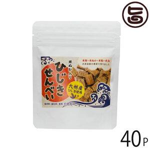 まろうど酒造 ひじきせんべい プレーン 40g×40P 宮崎県 人気 定番 土産 ひじき 米ぬか 栄養強化おやつ 送料無料