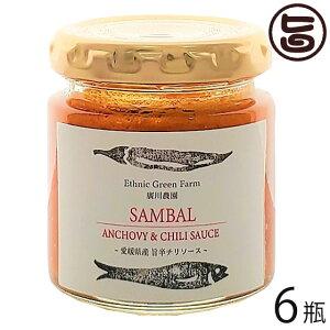 ISフーズ サンバルソース 80g×6瓶 愛媛県 土産 人気 調味料 条件付き送料無料