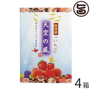 イソップ製菓 天空の風 いちご小箱 6個入×4箱 熊本県 人気 定番 土産 お菓子 和菓子 仏事用 条件付き送料無料