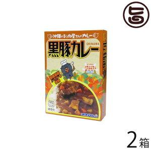 オキハム 沖縄のお肉屋さんのカレー 黒豚カレー 180g×2箱 沖縄 人気 定番 土産 惣菜 コクのある味わい深いカレー 送料無料