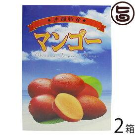 ギフト ヒロ農園 沖縄産マンゴー 2kg 5〜6玉×2箱 沖縄 人気 トロピカルフルーツ 送料無料
