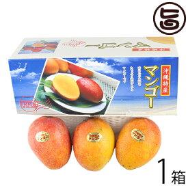 ギフト ヒロ農園 沖縄産マンゴー 1kg 3玉×1箱 沖縄 人気 トロピカルフルーツ 送料無料