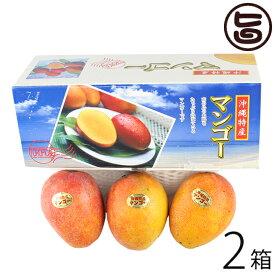 ギフト ヒロ農園 沖縄産マンゴー 1kg 3玉×2箱 沖縄 人気 トロピカルフルーツ 送料無料