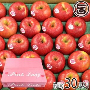 バレンタイン ギフト箱入 グランジャ 長野産 幻の林檎 ピンクレディ リンゴ フルーツ B級品 30玉 約5Kg クリプスピンク 贈答用 贈り物 条件付き送料無料