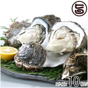 期間限定 隠岐のいわがき 3Lサイズ 5枚入り 3月から6月まで 日本海隠岐活魚倶楽部 ぷりぷり濃厚な岩牡蠣 鮮度抜群 ジューシーで磯の香りたっぷり 牡蠣メス 軍手 レシピ付 送料無料