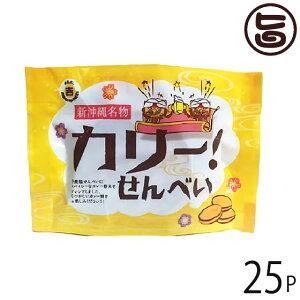 丸吉塩せんべい カリーせんべい 4枚入×25P 沖縄 人気 土産 菓子 おやつ つまみ カレーせんべい 送料無料