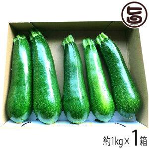 ファミリー農美家 鹿児島産 甘塩ズッキーニ 箱込み 1kg 採れたて新鮮な畑産地直送便 お取り寄せ 野菜 条件付き送料無料