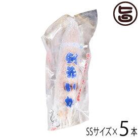 伝説のイカ プロトン凍結 活〆ケンサキイカ SS 121〜150g×5本 島根県 新鮮 魚介類 人気 贅沢 送料無料