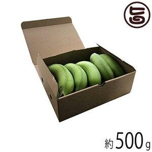 【期間限定】 沖縄県産 島バナナ 約500g相当分 希少 国産 バナナ 沖縄 無農薬栽培 送料無料