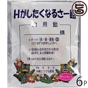 Hがしたくなるさー飴 12個×6袋 沖縄 パロディ 人気 土産 沖縄 おもしろ パロディ 人気 土産 ハロウィン クリスマス 送料無料