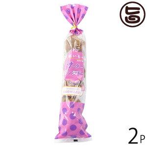 さーたーあんだぎー袋 紅芋 5個入り ×2袋 沖縄 定番 人気 土産 お菓子 秘密のケンミンSHOW 送料無料