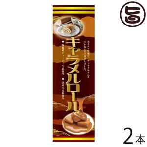 (大箱)キャラメルロール 2本 条件付 熊本 九州 名物 お土産 和菓子 ケーキ 人気 条件付き送料無料