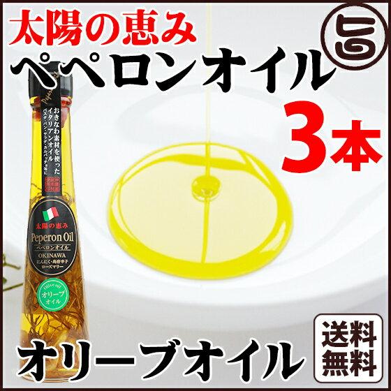 太陽の恵み ペペロンオイル オリーブオイル 110g×3本 送料無料 沖縄県 人気 定番 お土産 調味料 油 健康