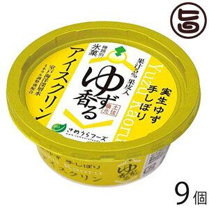 さめうらフーズ ゆず香るアイスクリン カップ 150ml×9個 高知県 四国 デザート 懐かしい ご当地アイス 冬アイス 条件付き送料無料