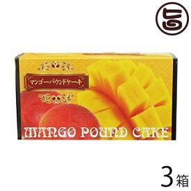 ホワイトデー お返し けーきはうす マンゴーパウンドケーキ 1本入り×3箱 沖縄 土産 定番 スイーツ 送料無料