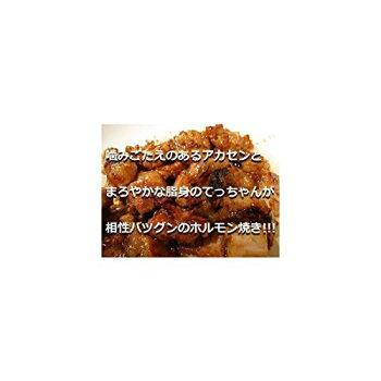 本格ホルモン焼き用タレ漬けホルモンシマ腸(てっちゃん)とアカセンがたっぷり450g×2P肉の匠テラオカ