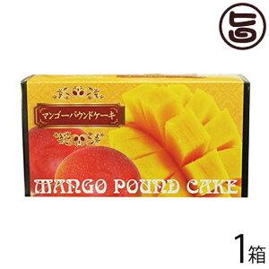 けーきはうす マンゴーパウンドケーキ 1本入り×1箱 沖縄 土産 定番 スイーツ 送料無料
