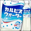 【送料無料】カルピス カルピスウォーター500ml×2ケース(全48本)