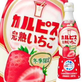 アサヒ カルピス 完熟いちご470mlプラスチックボトル×1ケース(全12本)