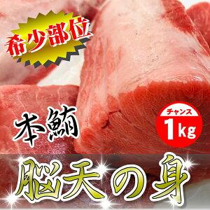 まぐろ マグロ 鮪 刺身 お取り寄せ 本まぐろ 脳天の身 1kg【希少部位】刺身・寿司・しゃぶしゃぶに、脂のってます【冷凍便】