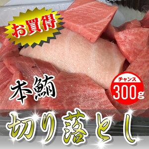 生本鮪 切り落とし300g【畜養・本鮪】お買い得品!刺身・手巻き寿司・鉄火丼に最適 まぐろ マグロ 鮪 訳あり 刺身 お取り寄せ お試し ※鮮度劣化が早いために関東近県の配送のみになります
