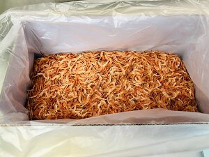 桜えび 素干し 【業務用 500g】 かき揚げ、お好み焼き、チャーハン麺類・寿司等にお使いいただけます