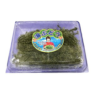 海ぶどう 100g入り×6箱セット 【沖縄名産の海藻】プチプチ食感がたまりません。酢の物、納豆に混ぜる、サラダ等に