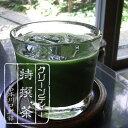 アイスで美味しい!抹茶専門店のグリーンティー 抹茶 粉末