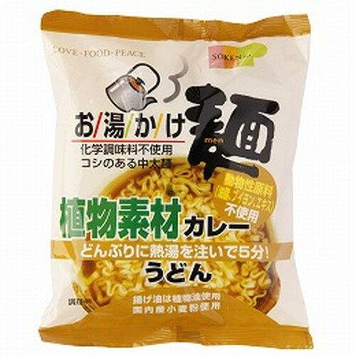 お湯かけ麺 植物素材カレーうどん (81g) 【創健社】
