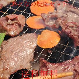 【送料無料】大人の焼肉セット カルビ&ホルモン 合計1200g