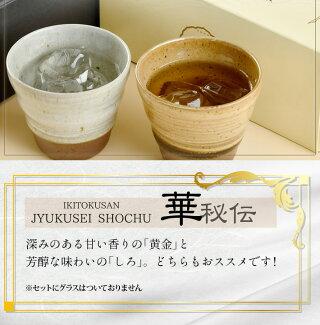 01甘い香りの黄金と芳醇な味わいのしろ